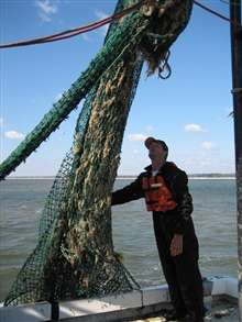 Debris removal crew analyzes net after a drag.