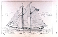 The Fish Commission Schooner GRAMPUS.