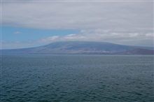 Isabela Island, a shield volcano, seen in the distance.