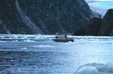 RA-2 running a survey line while dodging bergy bits in Tracy Arm