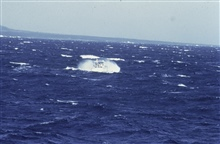 Survey launch off NOAA Ship RAINIER in heavy seas off Big Island of Hawaii.
