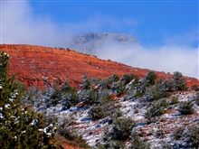 Red sandstone and white snow dusting pinion pines with a high mountainlooming over all through low-lying clouds.