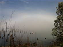 Fog bow seen at Titlow Park while walking dog early in the morning.