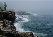 The sea and wind pound the Acadia National Park shore on a misty summer morning.