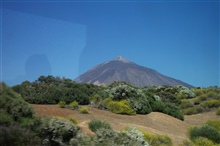 Mount Teide on Tenerife from above the tree line.