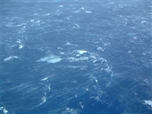Sea surface during Hurricane Isabel at 200 feet altitude.