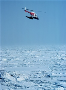 Lieutenant Terry Laydon leased Bell 206 during OCSEAP seal studies in Bering Sea