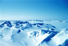 Winter sea ice terrain of the Beaufort Sea