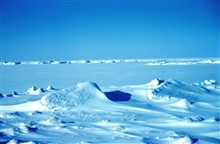The sea ice off of Tigvariak Island
