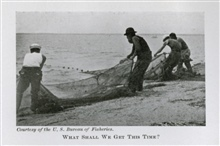What shall we get this time? Photo #1.In: The Boy with the U.S. Fisheries, by Francis Rolt-Wheeler, 1912.  Boston,Lothrop, Lee & Shepard Co. P. 346.