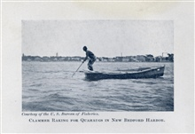 Clammer raking for quahaugs in New Bedford Harbor.In: The Boy with the U.S. Fisheries, by Francis Rolt-Wheeler, 1912.  Boston,Lothrop, Lee & Shepard Co. P.370.