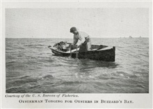 Oysterman tonging for oysters in Buzzards Bay.In: The Boy with the U.S. Fisheries, by Francis Rolt-Wheeler, 1912.  Boston,Lothrop, Lee & Shepard Co. P.370.