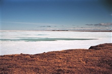 Looking towards Tigvariak Camp across lagoon ice