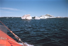 Ice bergs seen from survey launch after summer melt.  Bergs complicated surveywork.