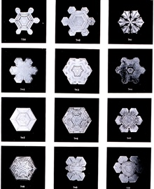Plate VII of Studies among the Snow Crystals ...  by Wilson Bentley,The Snowflake Man.   From Annual Summary of the Monthly Weather Reviewfor 1902.  Bentley was a bachelor farmer whose hobby was photographingsnow flakes.