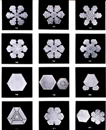 Plate XI of Studies among the Snow Crystals ...  by Wilson Bentley,The Snowflake Man.   From Annual Summary of the Monthly Weather Reviewfor 1902.  Bentley was a bachelor farmer whose hobby was photographingsnow flakes.