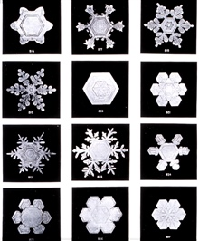 Plate XIII of Studies among the Snow Crystals ...  by Wilson Bentley,The Snowflake Man.   From Annual Summary of the Monthly Weather Reviewfor 1902.  Bentley was a bachelor farmer whose hobby was photographingsnow flakes.
