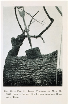The awesome force of a tornado - tree pierced by shovelTornado of May 27, 1896, at St. Louis, MissouriIn: The New Air World, Willis Luther Moore, 1922Figure 19, p. 146