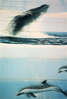 Building mural with humpback painting and dolphin.