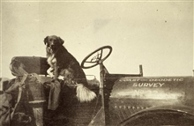 Gypsy the Watchman - or where dogs rode before pickup trucks.Triangulation party of E. W. Eickelberg.