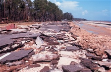 The aftermath of Hurricane Camille