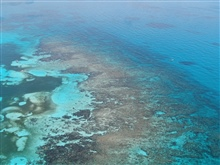 Aerial view of Carysfort Reef off of Key Largo.