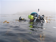 Scientific diver Kevin Stierhoff prepares to descend into a kelp forestat Point Lobos State Reserve.