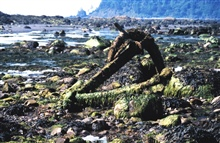 Remains of an anchor at Cape Alava