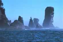 Fuca Pillar at Cape Flattery, the northwest extremity of the Olympic Peninsula