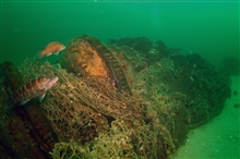 A large trawl net was wrapped around the windlass on theshipwreck of the coal schooner Paul Palmer until it was removed by NOAA diversin 2006.