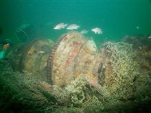 A large trawl net was wrapped around the windlass on the shipwreck ofthe coal schooner Paul Palmer until it was removed by NOAA divers in 2006 .