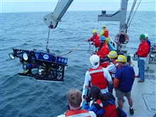 The remotely operated vehicle Hela, operated by the Northeast UnderwaterResearch Technology and Education Center at the University of Connecticut,has been used to monitor the health of the Stellwagen Bank National MarineSanctuary's ecosystem