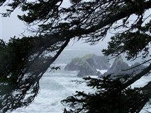 Ocean in the rain at Fort Abercrombie State Park in a scenereminscent of Point Lobos State Reserve in California.
