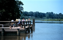 Chesapeake Bay - Maryland National Estuarine Research Reserve.