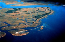 ACE Basin National Estuarine Research Reserve.  An aerial view of Pine Island.