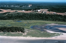 Wells National Estuarine Research Reserve.