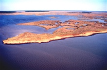 Grand Bay National Estuarine Research Reserve.Northeast showing Rigolets, maritime forest islands to left, and vegetated midden to right.   LSU aerial shoreline survey of October 1998.