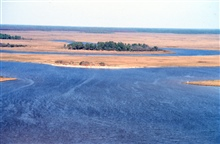 Grand Bay National Estuarine Research Reserve.Northeast over Point aux Chenes Bay showing Crooked Bayou with shell midden along northern shore, maritime pine island, and faintly along forest edge in background, browned forest from recent wildfire. LS