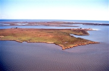 Grand Bay National Estuarine Research Reserve.East from Point aux Chenes Bay showing Rigolets, AL/MS state line at shoreline in background, Grand Bay, Alabama, in background. LSU aerial shoreline survey of October 1998.