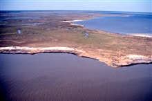 Grand Bay National Estuarine Research Reserve.North from Mississippi Sound, eroding shoreline on Rigolets, Grand Bay to right. LSU aerial shoreline survey of October 1998.