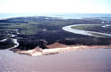 Grand Bay National Estuarine Research Reserve.West from Grand Bay, AL/MS state line along foreground shoreline of Rigolets.  LSU aerial shoreline survey of October 1998.