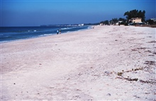 A view of the beach along the Gulf of Mexico
