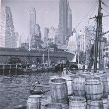 Fish market scene on the New York waterfront