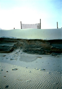Horizontal sand laminations show along eroding dune. Wind ripples below sandlaminations are oriented perpendicular to sand ledge.