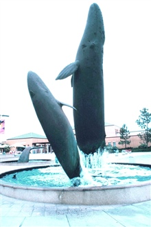 Whale sculptures grace the fountain at the Birch Aquarium