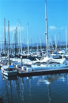 The yacht harbor at Ventura.