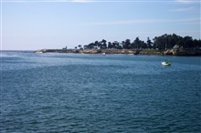 Santa Cruz Lighthouse Point, Steamers Land, and West Cliff Drive as seen fromthe Santa Cruz Wharf.