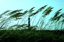 Cape Hatteras Lighthouse seen through the sea oats.