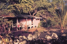 Home sweet home for Dr. McVey in 1966.  Living in paradise.