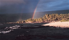 A double rainbow over palm trees on the coast